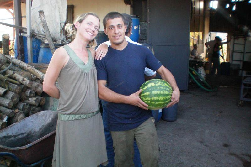 Tsiporowatermelon